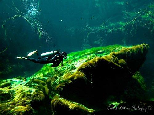Nicolas diving in casa cenote