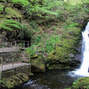 Dolgoch Falls & Cave Enterance