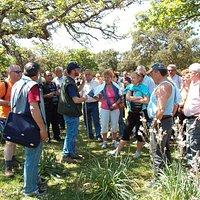 Visita Guidata nel Parco della Giara