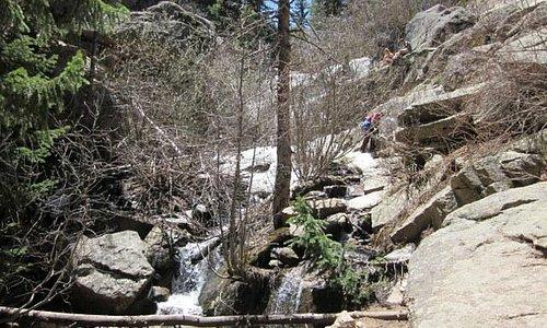 Cascades of Maxwell Falls