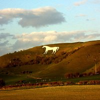 The white horse from the highway