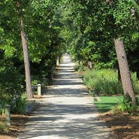 Bicycle path in Rosemary Beach, very upscale community, ride around through the back streets and