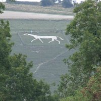 A telephoto shot through the trees from Pewsey