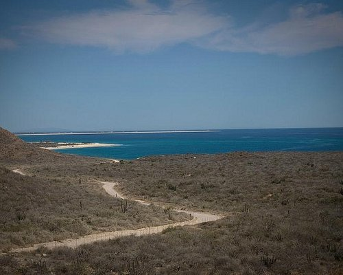 The dirt road to Cabo Pulmo