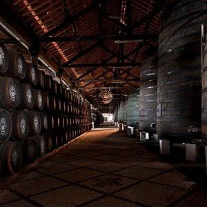 cockburn's port wine lodge
