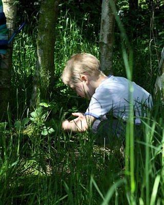 Scrimaging in the Secret Wood