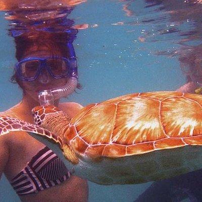 Snorkeling Turtles Culebrita, Culebra Puerto Rico