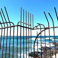 Argelès-sur-Mer. Sentier du littoral entre Argelès et Collioure. Photo Jodaya.