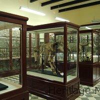 Ghar Dalam Museum