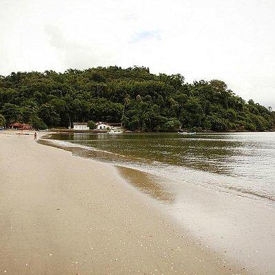 Vista Mata Atlantica na Praia do Pontal - Paraty, RJ