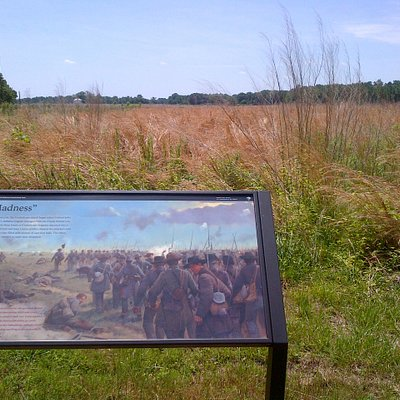 Confederate view prior to 1/2 mile charge over open ground