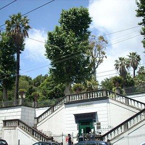 Orto Botanico di Napoli, ingresso