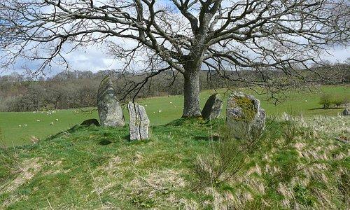 Lundin Farm Stone Circle