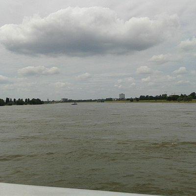 Der Rhein ......