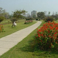 Leisure Valley Park, Gurgaon