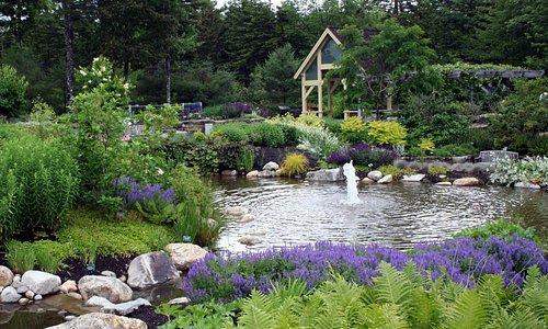 provided by: Coastal Maine Botanical Gardens