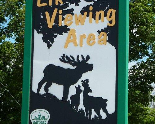 Elk Viewing Area, Gaylord, MI
