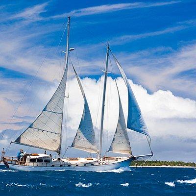 Wayward Wind Sailing