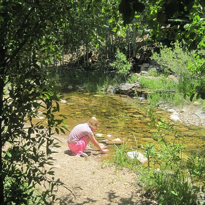 my daughter by the pond