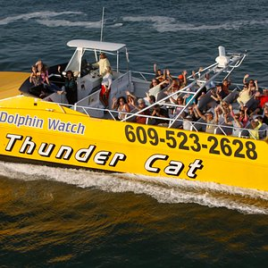 Take a ride on the Tcat!!