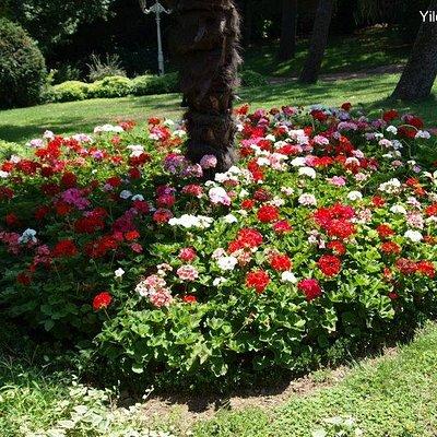 Park Yildiz