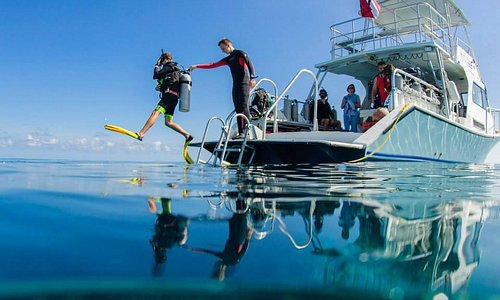Entering from our dive deck, on our 36 foot Newton dive boat.