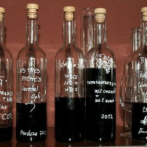 Blending Experience during a Wine Tour in Maipu Mendoza