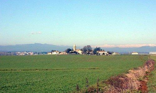 Vistas y campos