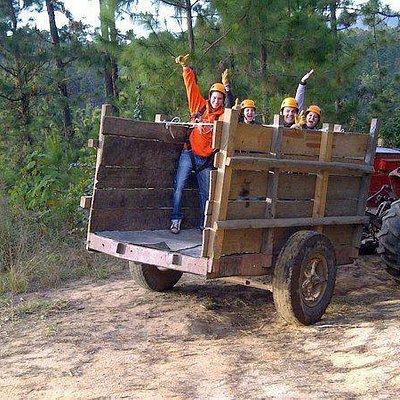 Paseos al bosque en tractor