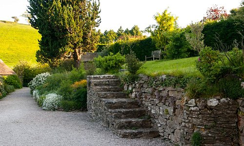 There are lots of paths to explore in the garden