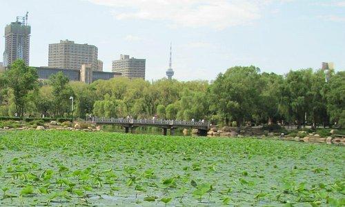 South Lake Park