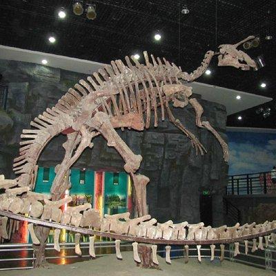 Changchun Geological Palace Museum