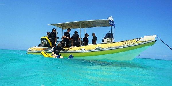 Seatour Snorkeling Guadeloupe