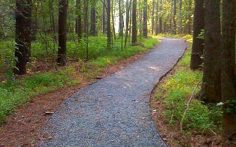 Pebble trail to walk-in camping spots