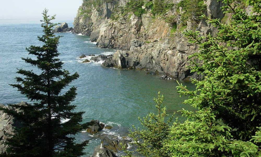 Quoddy Head Ocean view from Inland Trail