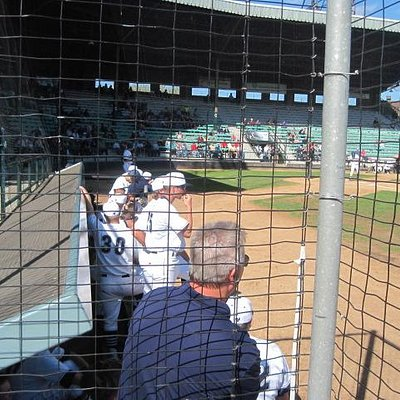 Wheelchair seating right next to dugout