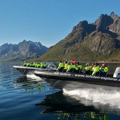 Explore Trollfjord & eagle safari.