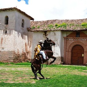 Dancing whit our Peruvian paso Horses