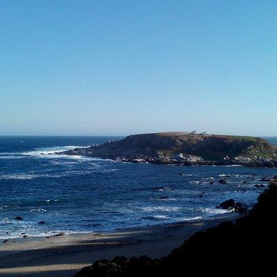 Isla Pinguino Cachagua