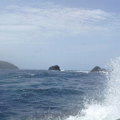 bookends dive site