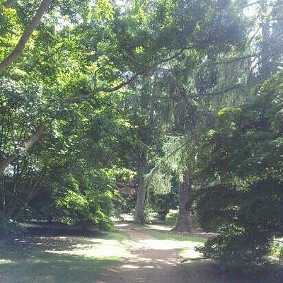 the arboretum