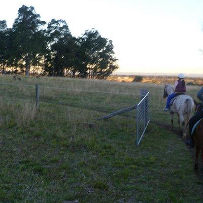 Sunset Paddock Ride
