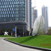 IFC Shanghai
