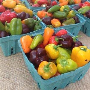 farmers market bluffton, sc