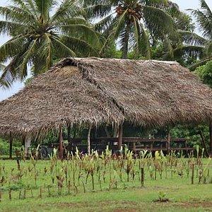 Aitutaki Punarei Cultural Tour