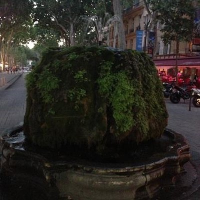 The Mossy Fountain