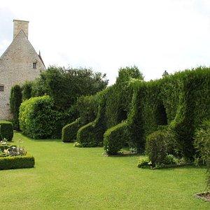 Imaginative topiary