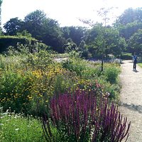 Botanischer Garten Gütersloh im Juli