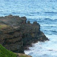 Rocky peninsular