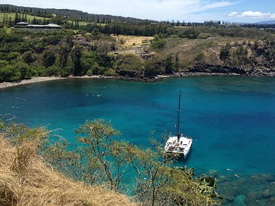 Honolua Bay from the East